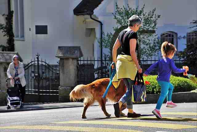 Benefits of Dogs to Senior Citizens - Senior Citizens & Dogs