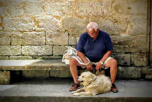 Senior Citizens And Dogs