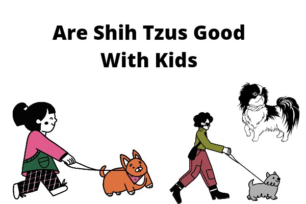 Are Shih Tzus Good With Kids